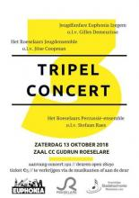 Flyer van try-out evaluatieconcert VLAMO met Euphonia
